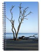 Hunting Island Graveyard Spiral Notebook