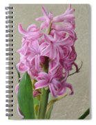 Hyacinth Pink Spiral Notebook