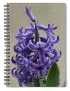 Hyacinth Purple Spiral Notebook