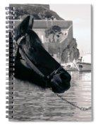 Hydra Horse Spiral Notebook