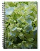 Hydrangea 5 Spiral Notebook