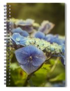 Hydrangea In Fading Light Spiral Notebook