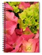 Hydrangea Joy Spiral Notebook