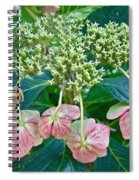 Hydrangea With A New Look Spiral Notebook