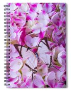 Hydrangea With Bright White Butterfly Spiral Notebook