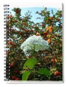 Hydrangea With Mountain Ash Spiral Notebook