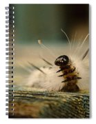 I Am A Caterpillar Spiral Notebook