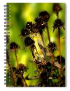 I Am A Flower Stalk Do You See Me Spiral Notebook