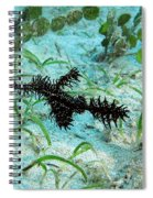 I Am A Hairy Ghost Pipe Fish Spiral Notebook