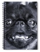 I Am Cute And I Know It Spiral Notebook