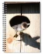 I Can Fly Spiral Notebook
