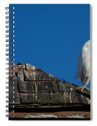 I Cry Fowl Spiral Notebook