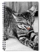 I Don't Wanna Spiral Notebook