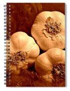 I Dream Of Garlic Spiral Notebook