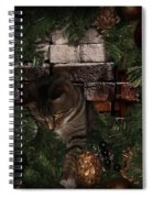 I Finally Found The Cat - Featured In Harmony And Happiness-visions Of The Night-newbies Groups Spiral Notebook