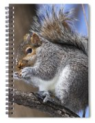 I Found A Treat Spiral Notebook