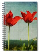 I Go To The Hills When My Heart Is Lonely Spiral Notebook