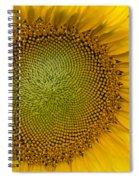 I Got Sunshine Spiral Notebook