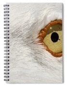 I Have My Eye On You Spiral Notebook