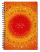 I Like You Just The Way You Are 2 Spiral Notebook
