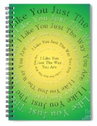 I Like You Just The Way You Are 3 Spiral Notebook