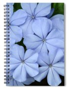 I Love Blue Flowers Spiral Notebook