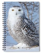 I Only Have Eyes For You Spiral Notebook