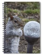 I See Peanuts In My Future Spiral Notebook