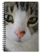 I See You Cat - Square Spiral Notebook