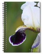 I Spy An Iris Spiral Notebook