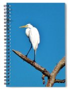 I Stand Alone Spiral Notebook