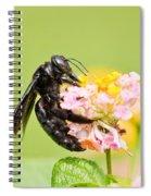 I Want Pollen Spiral Notebook