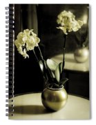 Delicate Reflection Spiral Notebook