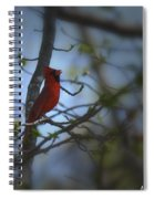 I Want To Sing A Song To You Lord Spiral Notebook