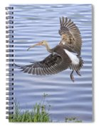 Ibis Incoming Spiral Notebook