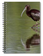 Ibis Reflection Spiral Notebook