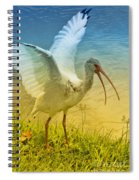 Ibis Talking Spiral Notebook