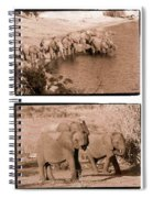 Elephants Spiral Notebook