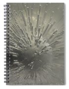 Ice Abstract II Spiral Notebook