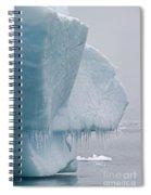 Ice Age... Spiral Notebook
