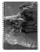 Ice Among The Floating Tree Spiral Notebook