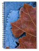 Ice And Life Spiral Notebook