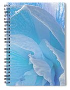 Ice Blue Amaryllis Abstract Spiral Notebook