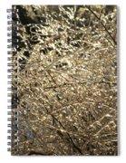Ice Burst Spiral Notebook