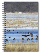 Ice Capades Spiral Notebook