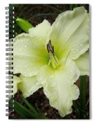 Ice Carnival Daylily Spiral Notebook