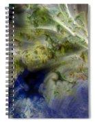 Ice Clouds Spiral Notebook