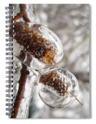 Ice Cocoons I Spiral Notebook