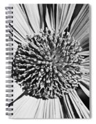 Ice Cool Spiral Notebook