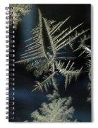 Ice Crystals Spiral Notebook
